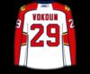 Vokoun